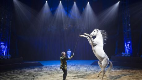cirque et enfants