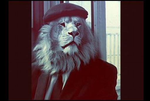 Blog papa Lion